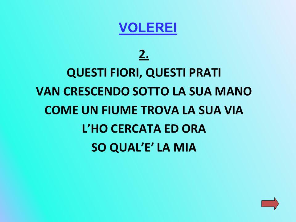VOLEREI 2.