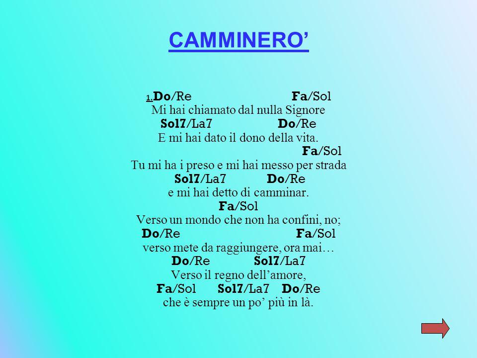 CAMMINERO' 1.
