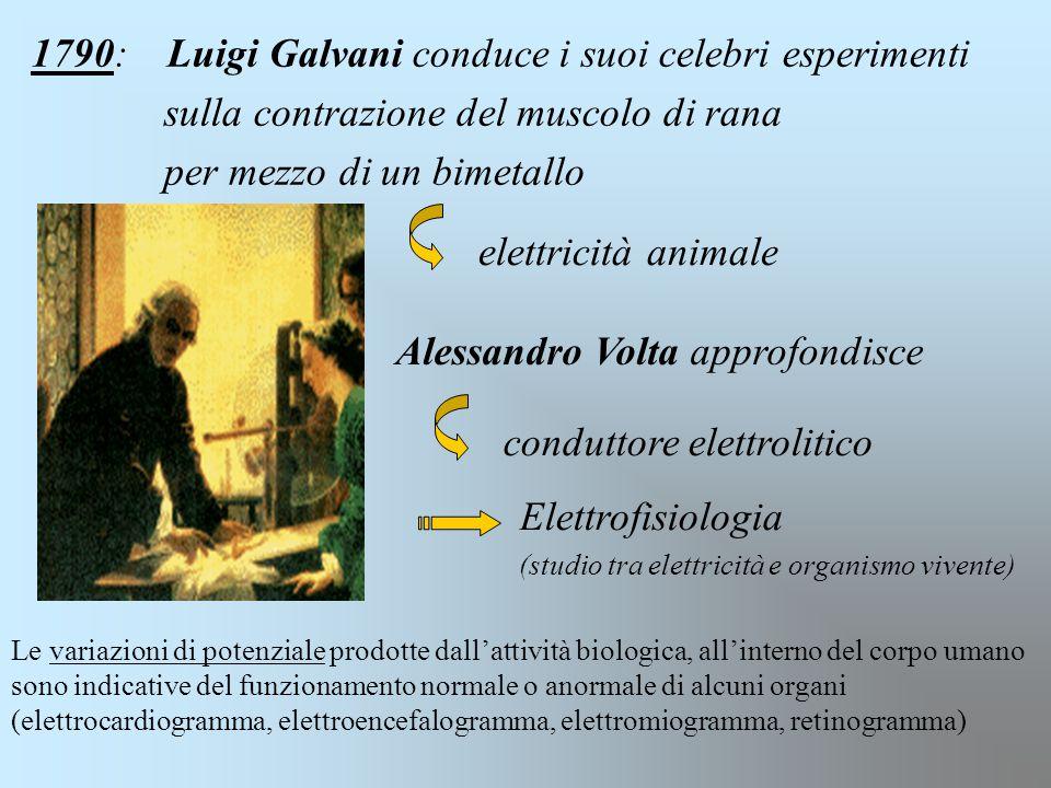 1790: Luigi Galvani conduce i suoi celebri esperimenti sulla contrazione del muscolo di rana per mezzo di un bimetallo elettricità animale Alessandro