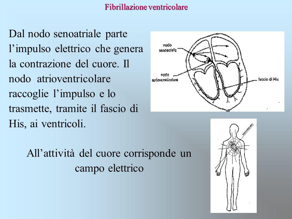 Fibrillazione ventricolare Dal nodo senoatriale parte l'impulso elettrico che genera la contrazione del cuore. Il nodo atrioventricolare raccoglie l'i