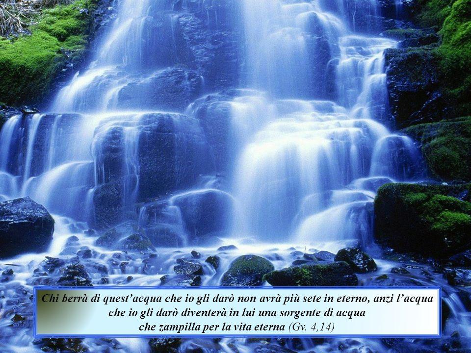 Chi berrà di quest'acqua che io gli darò non avrà più sete in eterno, anzi l'acqua che io gli darò diventerà in lui una sorgente di acqua che zampilla per la vita eterna (Gv.