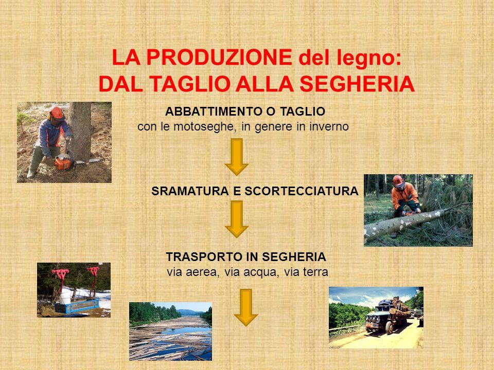 LA PRODUZIONE del legno: DAL TAGLIO ALLA SEGHERIA ABBATTIMENTO O TAGLIO con le motoseghe, in genere in inverno SRAMATURA E SCORTECCIATURA TRASPORTO IN