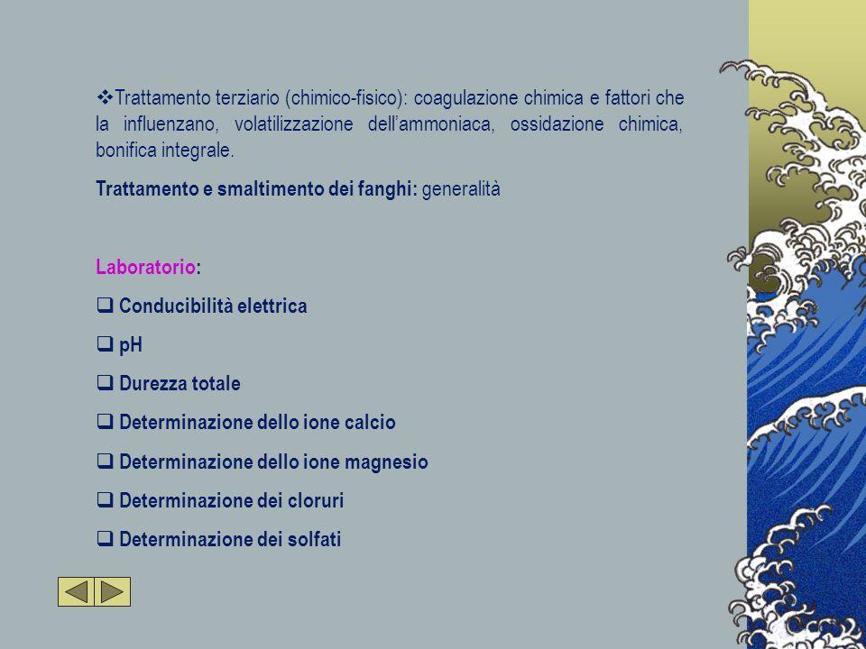  Trattamento terziario (chimico-fisico): coagulazione chimica e fattori che la influenzano, volatilizzazione dell'ammoniaca, ossidazione chimica, bonifica integrale.
