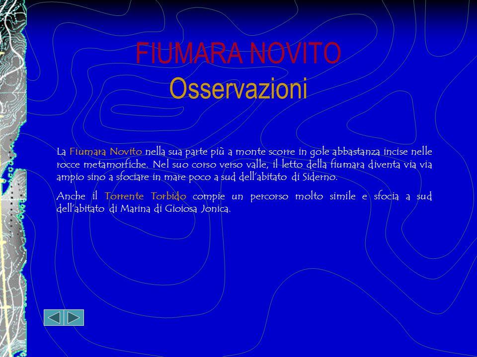 FIUMARA NOVITO Osservazioni La Fiumara Novito nella sua parte più a monte scorre in gole abbastanza incise nelle rocce metamorfiche.