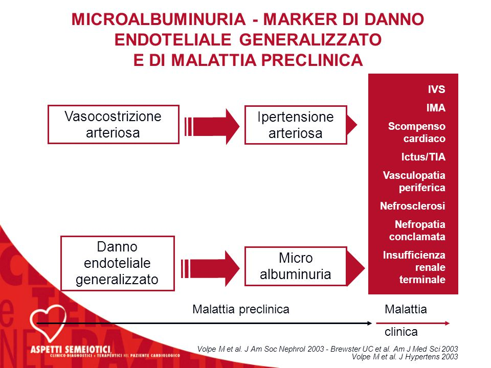 MICROALBUMINURIA - MARKER DI DANNO ENDOTELIALE GENERALIZZATO E DI MALATTIA PRECLINICA Volpe M et al. J Am Soc Nephrol 2003 - Brewster UC et al. Am J M