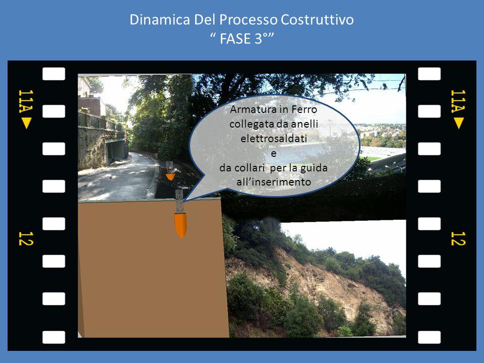 """Dinamica Del Processo Costruttivo """" FASE 3°"""" Armatura in Ferro collegata da anelli elettrosaldati e da collari per la guida all'inserimento"""
