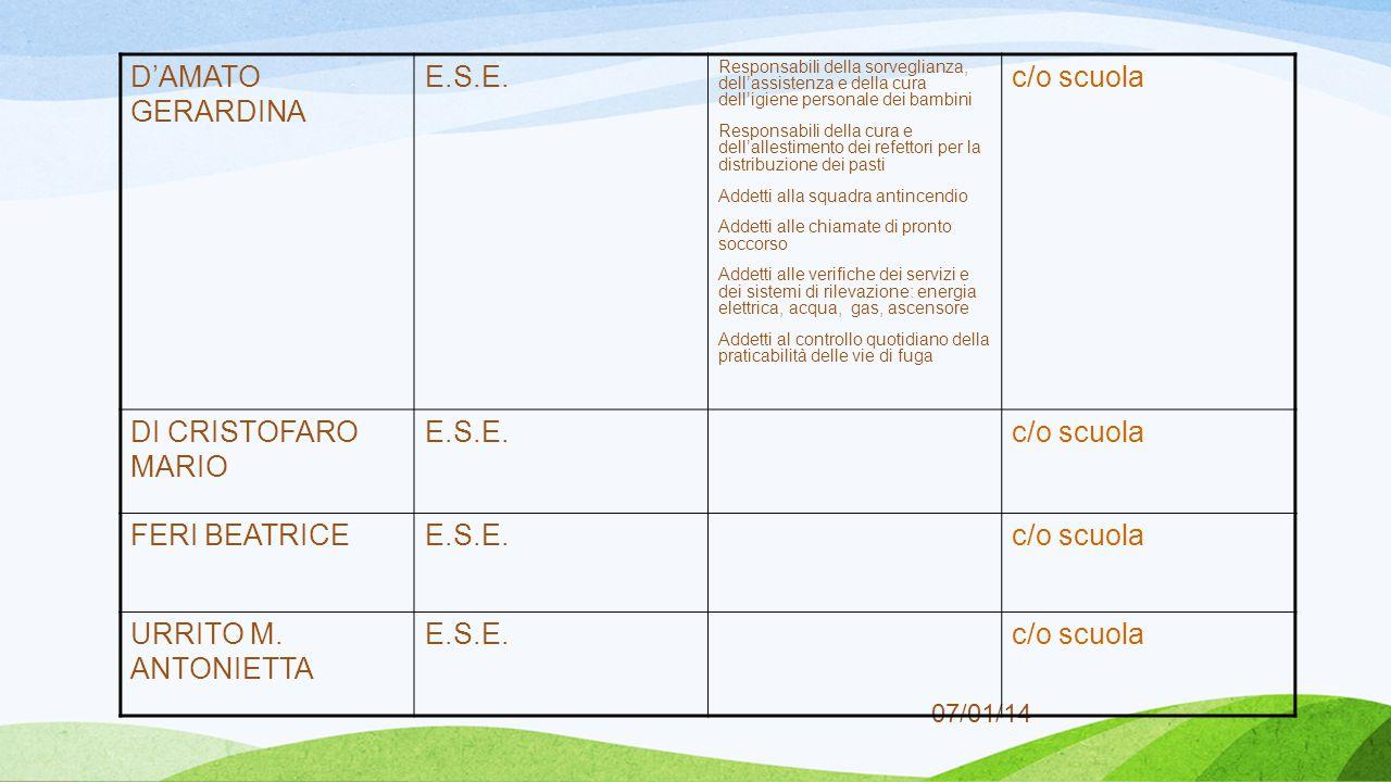 07/01/14 D'AMATO GERARDINA E.S.E.