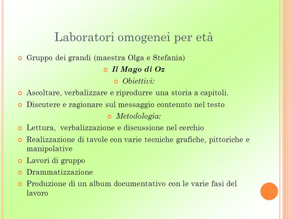 Laboratori omogenei per età Gruppo dei grandi (maestra Olga e Stefania) Il Mago di Oz Obiettivi: Ascoltare, verbalizzare e riprodurre una storia a cap