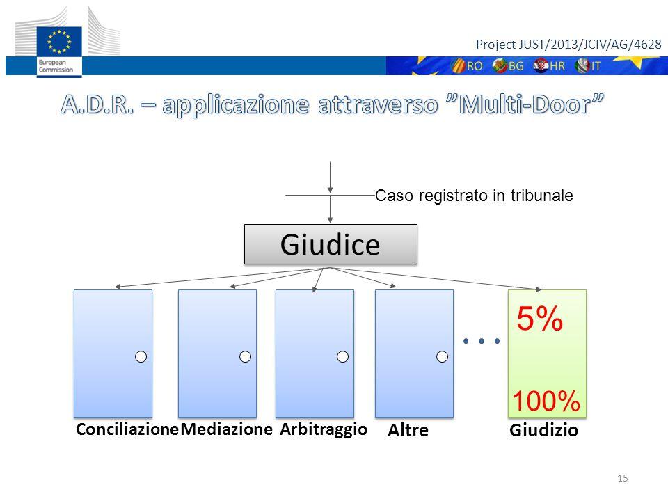 Project JUST/2013/JCIV/AG/4628 15 Giudice ConciliazioneMediazioneArbitraggio Giudizio Altre 5% 100% Caso registrato in tribunale