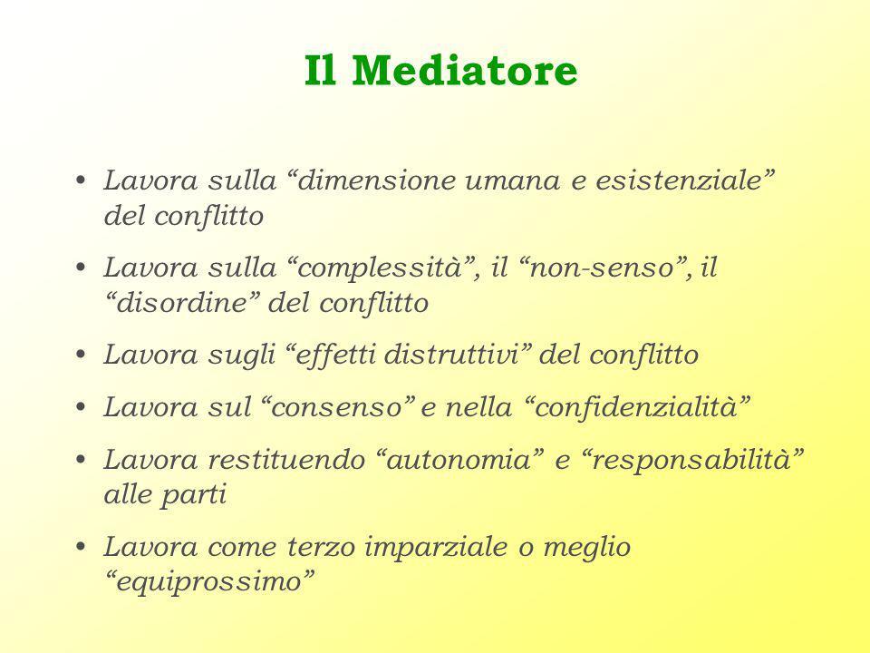 -modello sistemico anche definito mediazione familiare centrato sulla famiglia, viene fatto risalire a Irving e Benjamin e in Italia ad Ardone, Malagodi Togliatti, Mastropaolo, Mazzei e De Bernart.