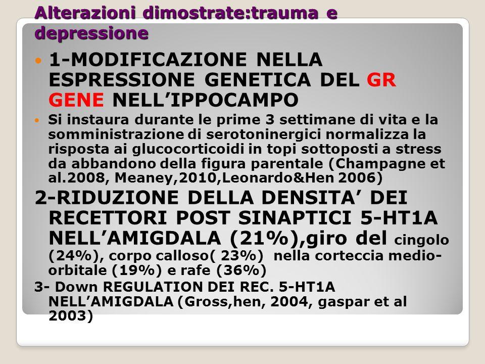 GR/CORT CRH GR/PROG CORT DHEAS placenta HT PIT Jung Adrenal ACTH CRH PR/PROG DHEA ER/E 2 E2E2 uterus Gap Junctions PG, OT OT receptors Prenatal stress and brain development Brain Res.