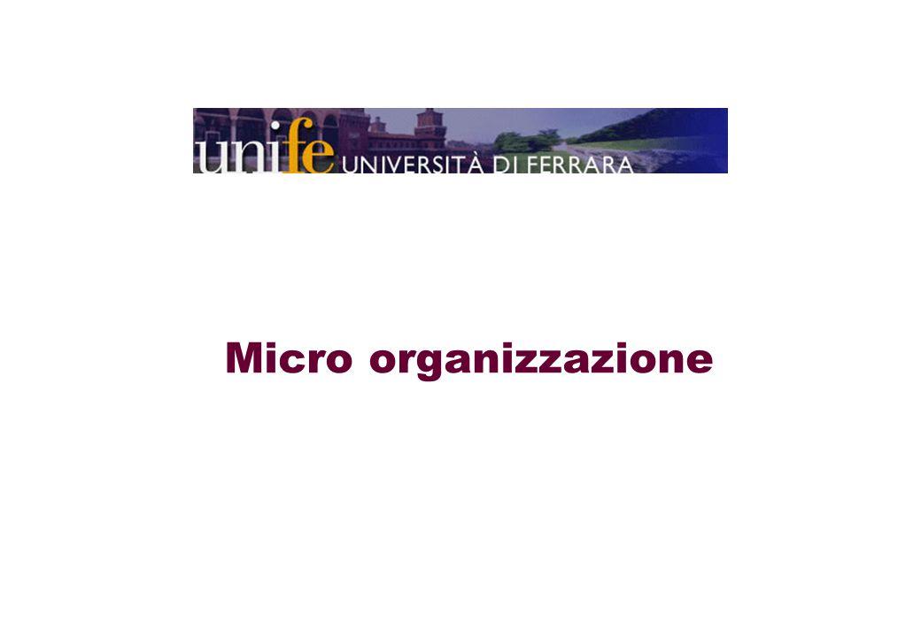 Micro organizzazione