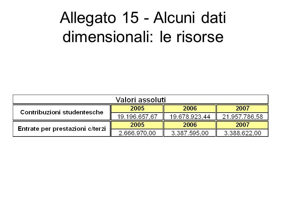 Allegato 15 - Alcuni dati dimensionali: le risorse