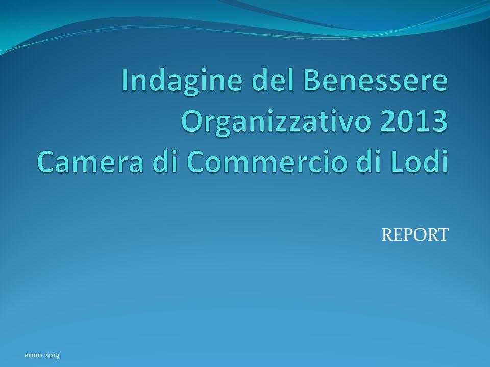 REPORT anno 2013