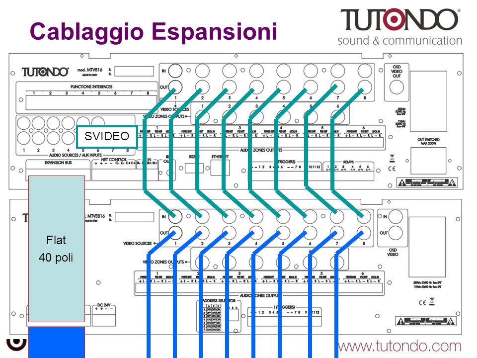 Flat 40 poli Cablaggio Espansioni SVIDEO