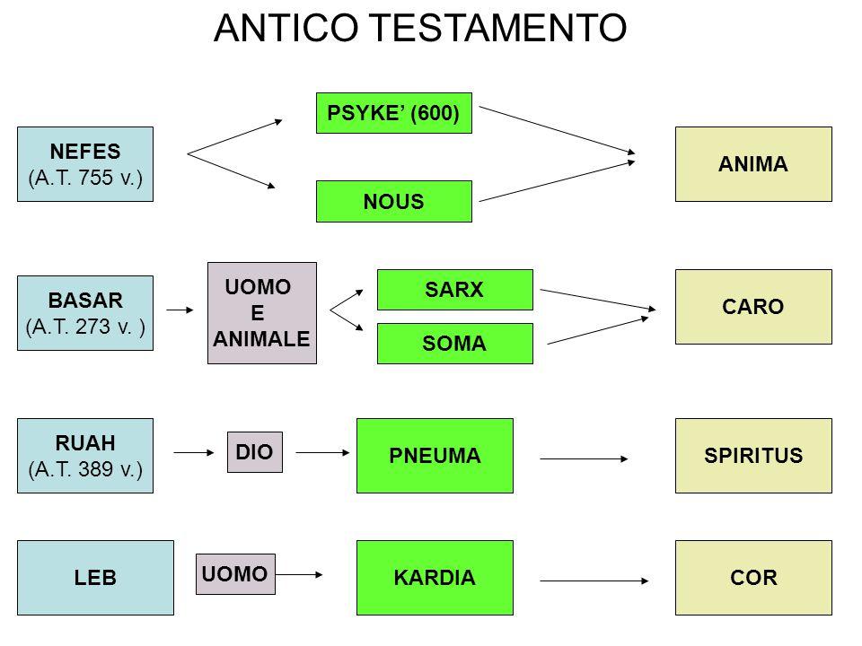 NEFES (A.T.755 v.) PSYKE' (600) BASAR (A.T. 273 v.