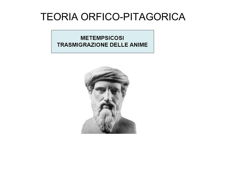 TEORIA ORFICO-PITAGORICA METEMPSICOSI TRASMIGRAZIONE DELLE ANIME