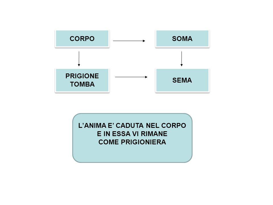 CORPO SOMA SEMA PRIGIONE TOMBA PRIGIONE TOMBA L'ANIMA E' CADUTA NEL CORPO E IN ESSA VI RIMANE COME PRIGIONIERA