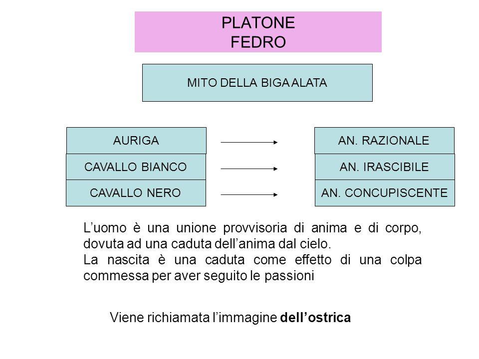 PLATONE FEDRO MITO DELLA BIGA ALATA AN.RAZIONALE AN.