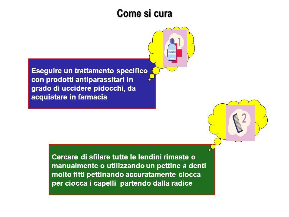 Come si cura Eseguire un trattamento specifico con prodotti antiparassitari in grado di uccidere pidocchi, da acquistare in farmacia Cercare di sfilar