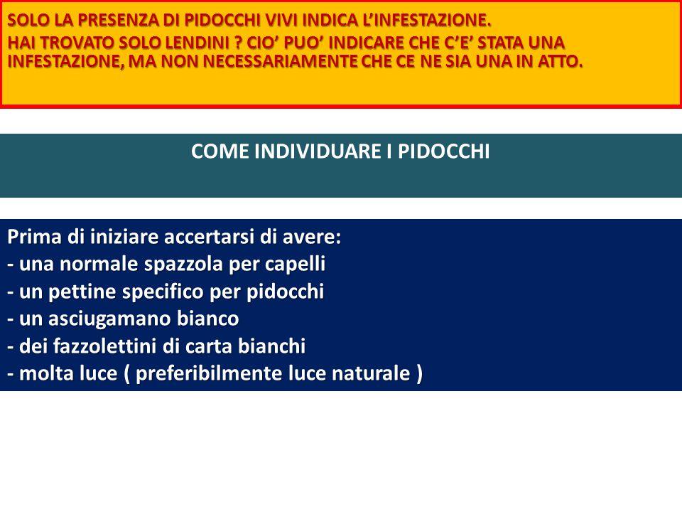 COME INDIVIDUARE I PIDOCCHI SOLO LA PRESENZA DI PIDOCCHI VIVI INDICA L'INFESTAZIONE.