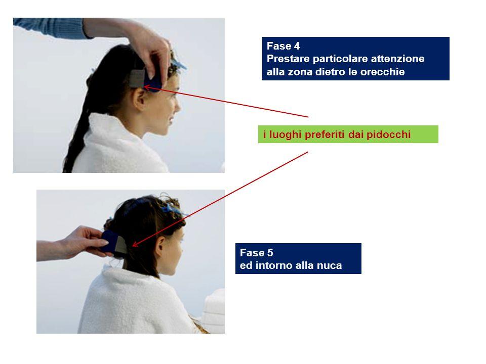 Fase 4 Prestare particolare attenzione alla zona dietro le orecchie Fase 5 ed intorno alla nuca i luoghi preferiti dai pidocchi