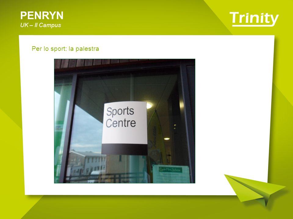 PENRYN UK – Il Campus Per lo sport: la palestra