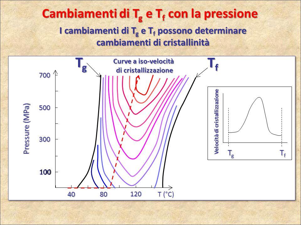 100 300 100 500 700 Pressure (MPa) 40 80 120 T (°C) TgTgTgTg Velocità di cristallizzazione TgTgTgTg TfTfTfTf Curve a iso-velocità di cristallizzazione