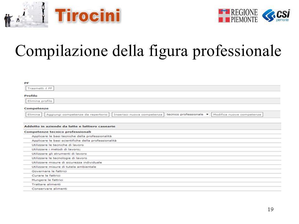19 Compilazione della figura professionale