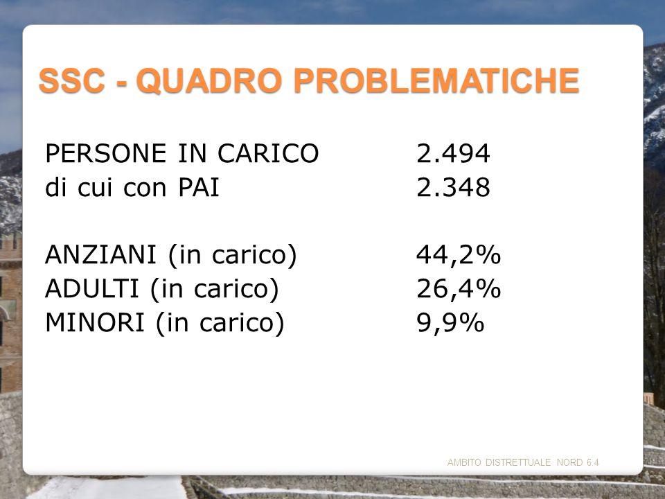 AMBITO DISTRETTUALE NORD 6.4 SSC - QUADRO PROBLEMATICHE PERSONE IN CARICO2.494 di cui con PAI2.348 ANZIANI (in carico)44,2% ADULTI (in carico)26,4% MI