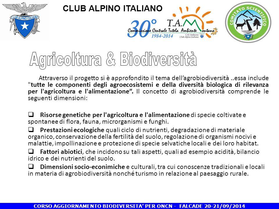 CLUB ALPINO ITALIANO CORSO AGGIORNAMENTO BIODIVERSITA' PER ONCN - FALCADE 20-21/09/2014 Attraverso il progetto si è approfondito il tema dell'agrobiodiversità..essa include tutte le componenti degli agroecosistemi e della diversità biologica di rilevanza per l agricoltura e l alimentazione .