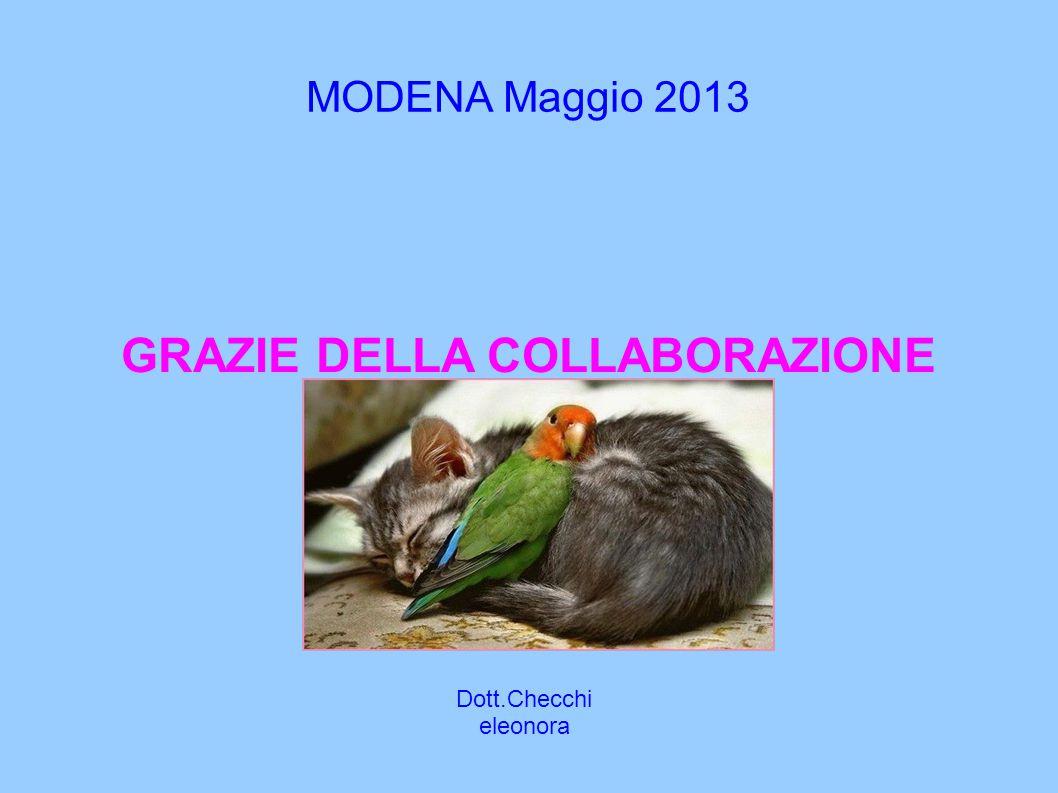MODENA Maggio 2013 Dott.Checchi eleonora GRAZIE DELLA COLLABORAZIONE