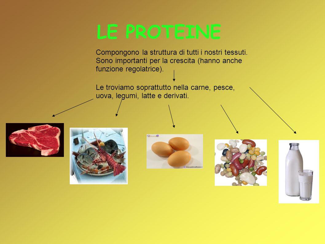 LE PROTEINE Compongono la struttura di tutti i nostri tessuti. Sono importanti per la crescita (hanno anche funzione regolatrice). Le troviamo sopratt