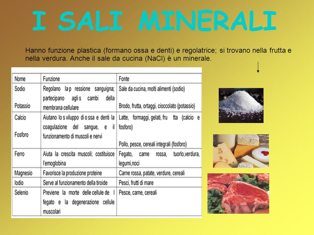 I SALI MINERALI Hanno funzione plastica (formano ossa e denti) e regolatrice; si trovano nella frutta e nella verdura. Anche il sale da cucina (NaCl)