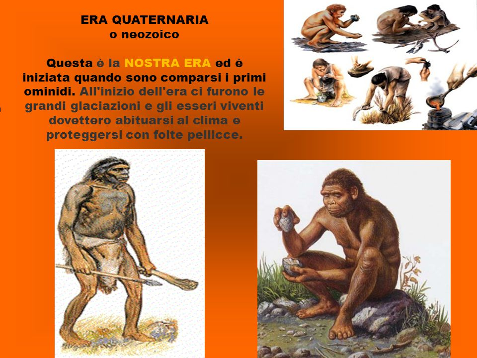 ERA QUATERNARIA o neozoico Questa è la NOSTRA ERA ed è iniziata quando sono comparsi i primi ominidi. All'inizio dell'era ci furono le grandi glaciazi