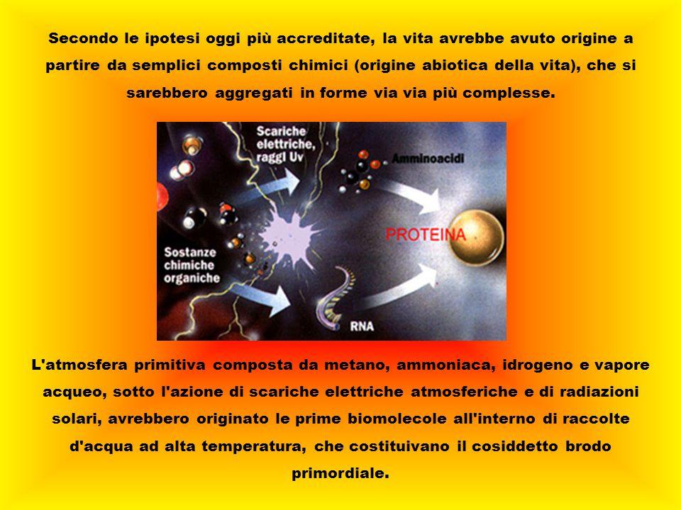 Secondo le ipotesi oggi più accreditate, la vita avrebbe avuto origine a partire da semplici composti chimici (origine abiotica della vita), che si sa