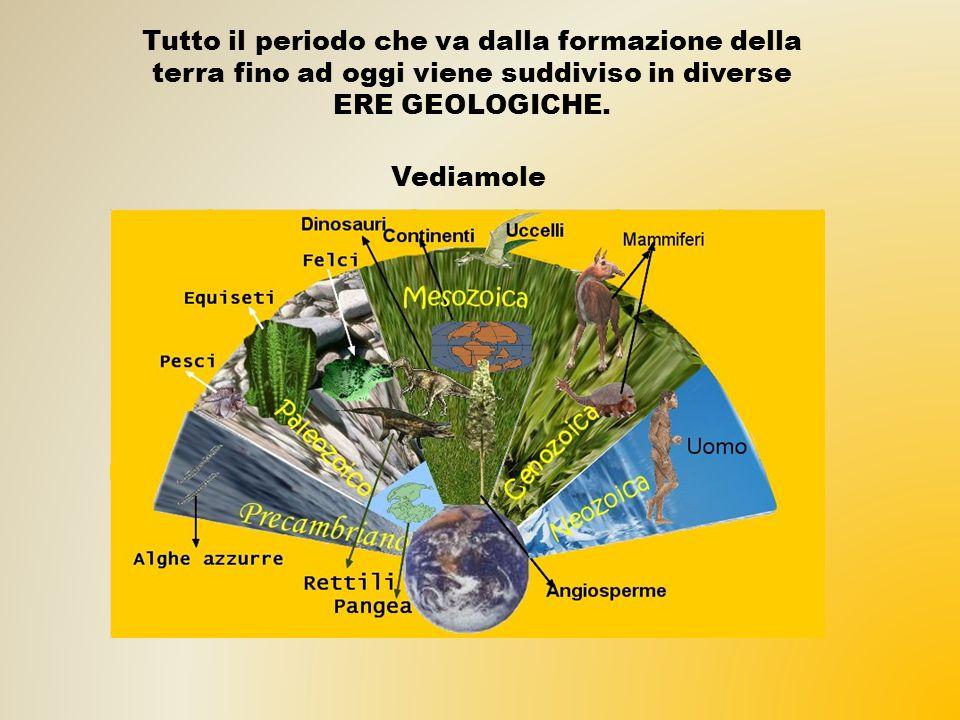 Tutto il periodo che va dalla formazione della terra fino ad oggi viene suddiviso in diverse ERE GEOLOGICHE. Vediamole