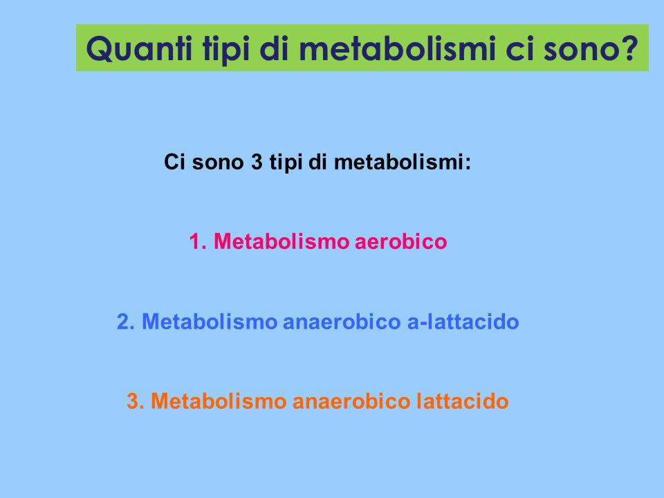 Quanti tipi di metabolismi ci sono? Ci sono 3 tipi di metabolismi: 1.Metabolismo aerobico 2.Metabolismo anaerobico a-lattacido 3. Metabolismo anaerobi