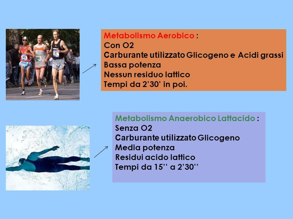Metabolismo Aerobico : Con O2 Carburante utilizzato Glicogeno e Acidi grassi Bassa potenza Nessun residuo lattico Tempi da 2'30' in poi. Metabolismo A