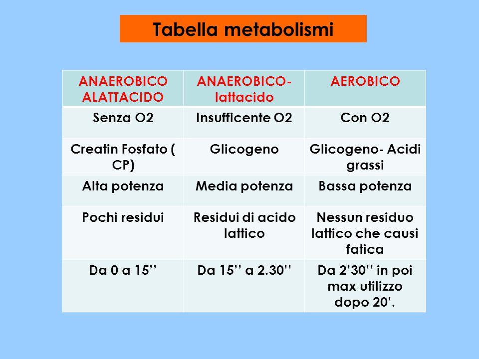 Tabella metabolismi ANAEROBICO ALATTACIDO ANAEROBICO- lattacido AEROBICO Senza O2Insufficente O2Con O2 Creatin Fosfato ( CP) GlicogenoGlicogeno- Acidi