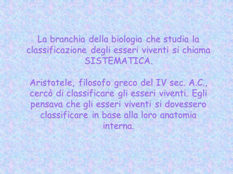 La branchia della biologia che studia la classificazione degli esseri viventi si chiama SISTEMATICA. Aristotele, filosofo greco del IV sec. A.C., cerc