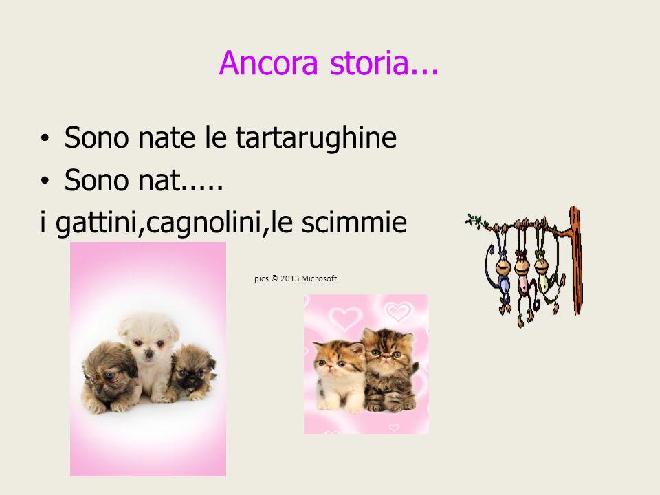 Ancora storia... Sono nate le tartarughine Sono nat..... i gattini,cagnolini,le scimmie pics © 2013 Microsoft