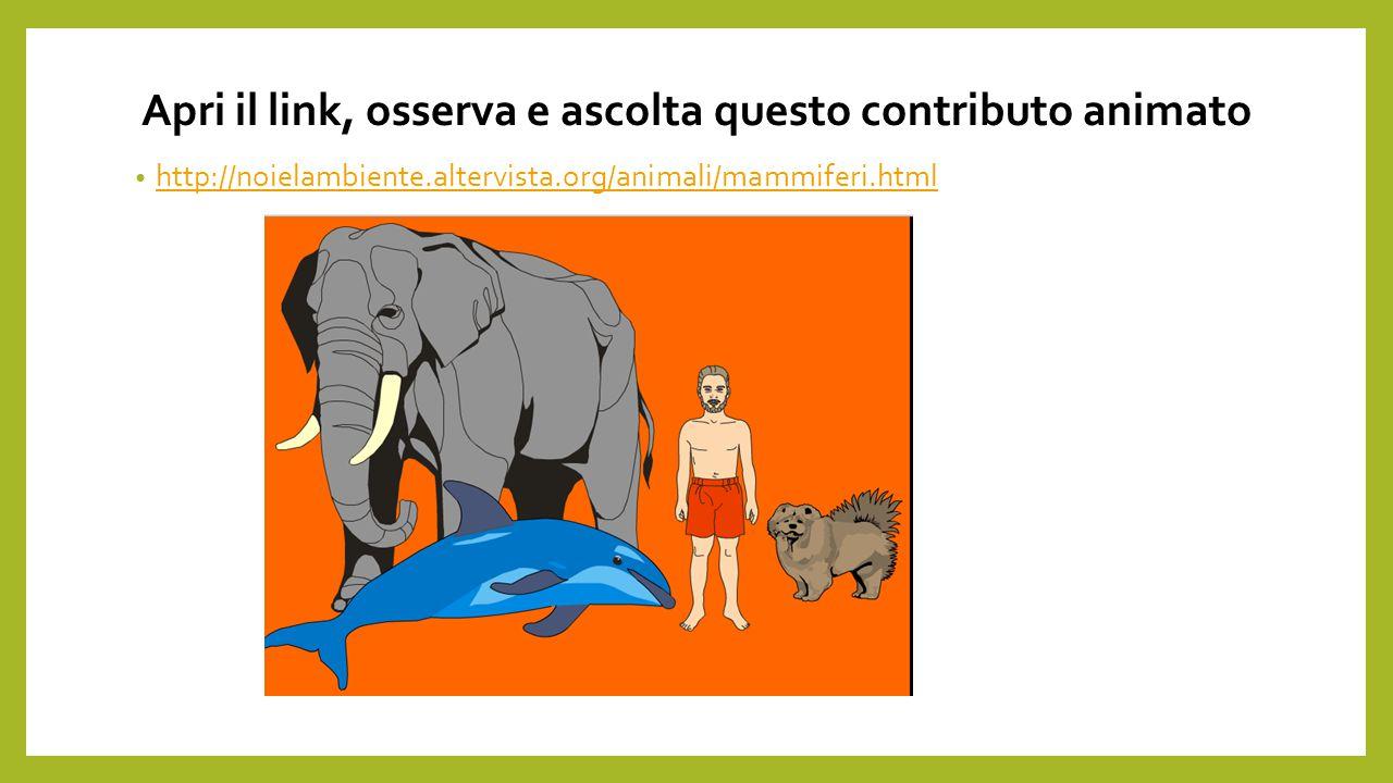 Apri il link, osserva e ascolta questo contributo animato http://noielambiente.altervista.org/animali/mammiferi.html