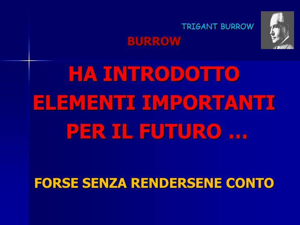 TRIGANT BURROW TRIGANT BURROW BURROW HA INTRODOTTO ELEMENTI IMPORTANTI PER IL FUTURO … PER IL FUTURO … FORSE SENZA RENDERSENE CONTO