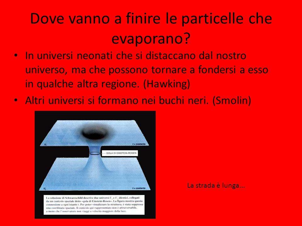 Dove vanno a finire le particelle che evaporano? In universi neonati che si distaccano dal nostro universo, ma che possono tornare a fondersi a esso i