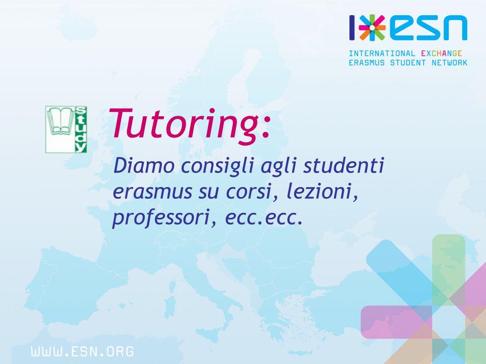 Tutoring: Diamo consigli agli studenti erasmus su corsi, lezioni, professori, ecc.ecc.
