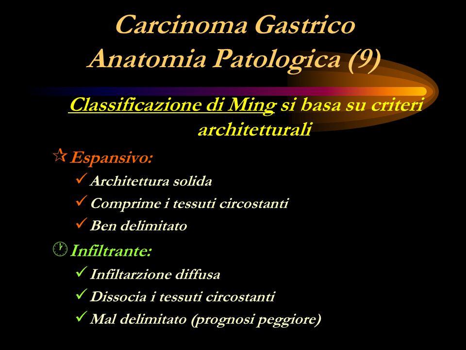 Carcinoma Gastrico Anatomia Patologica (9) Classificazione di Ming si basa su criteri architetturali ¶ Espansivo: Architettura solida Comprime i tessu