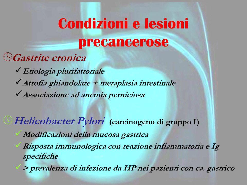º Gastrite cronica Etiologia plurifattoriale Atrofia ghiandolare + metaplasia intestinale Associazione ad anemia perniciosa » Helicobacter Pylori (car