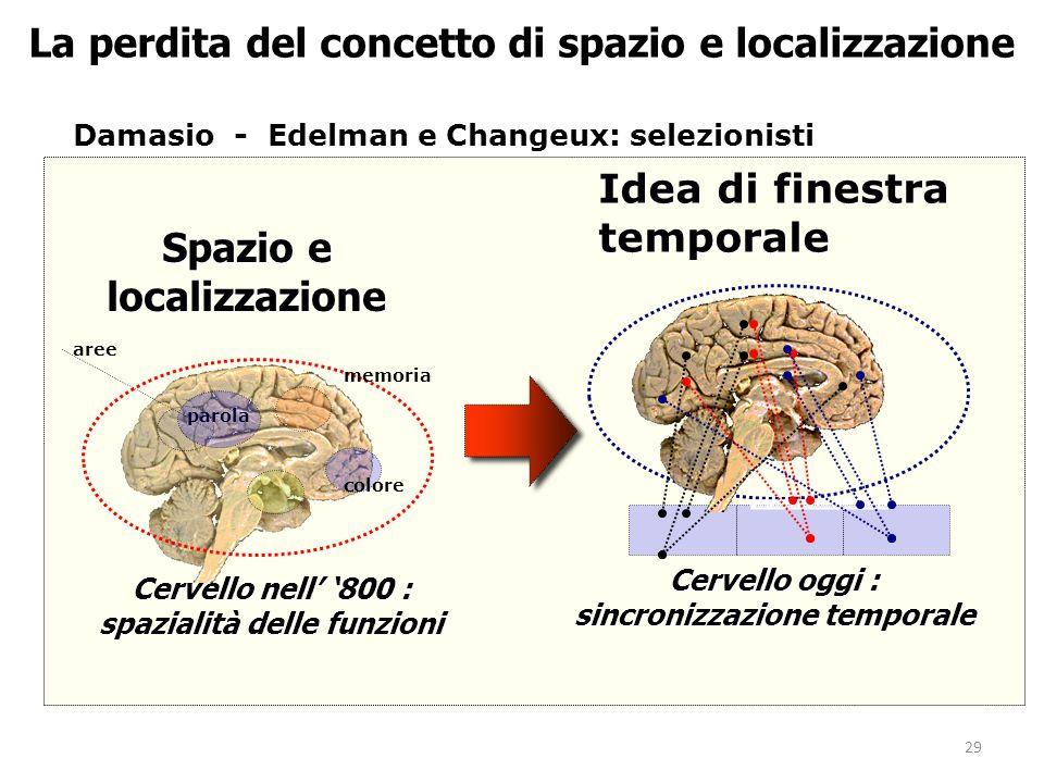 29 La perdita del concetto di spazio e localizzazione Damasio - Edelman e Changeux: selezionisti Spazio e localizzazione Cervello nell' '800 : spazialità delle funzioni Idea di finestra temporale memoria colore parola Cervello oggi : sincronizzazione temporale aree