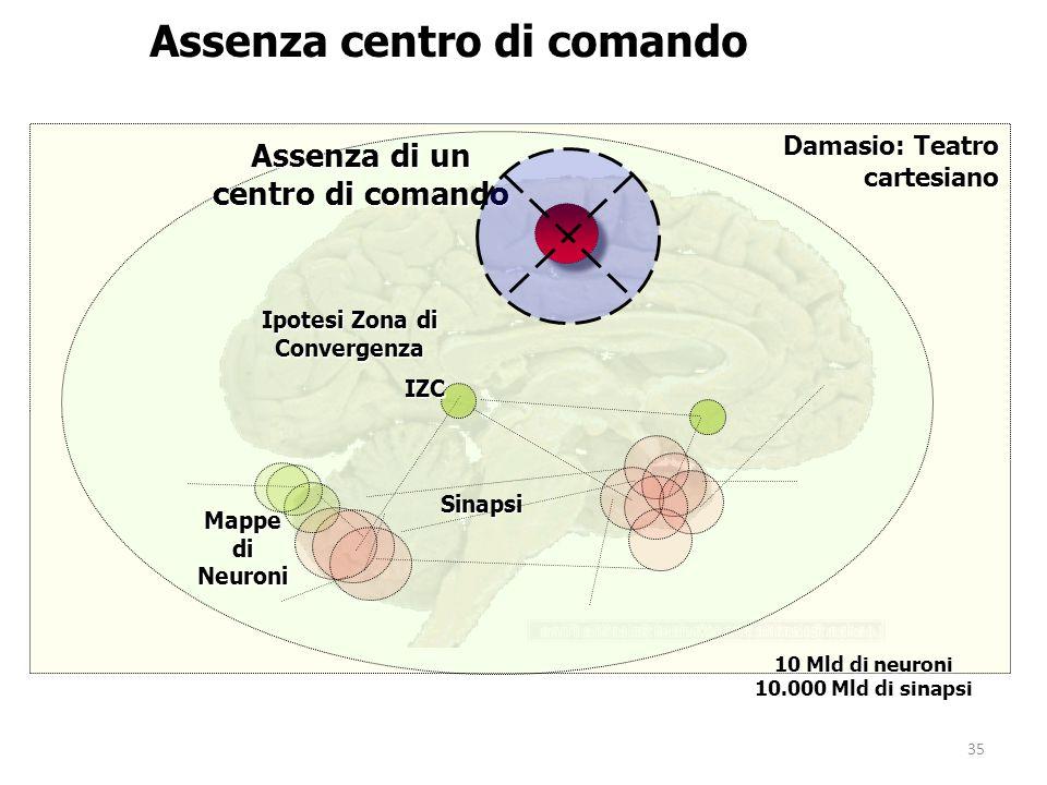 35 Mappe di Neuroni Assenza di un centro di comando Assenza centro di comando Damasio: Teatro cartesiano Sinapsi IZC Ipotesi Zona di Convergenza 10 Mld di neuroni 10.000 Mld di sinapsi